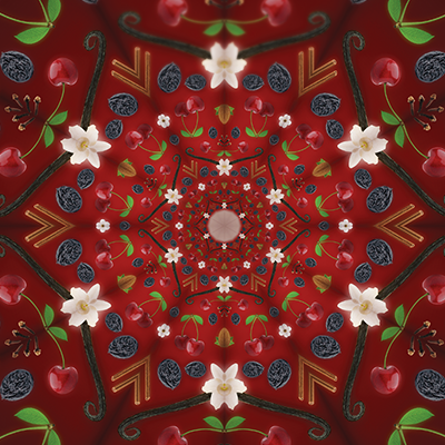 ALITA kaleidoskopas